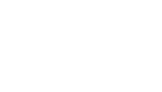 Buisness Beyonds Words